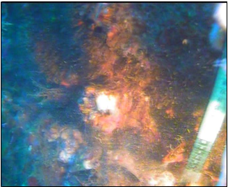 Diver check grouting at upper clamp C1